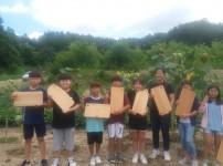목공체험학습 도마 만들기 (평은초등학교)