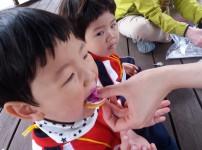 유아숲 체험 꽃과자