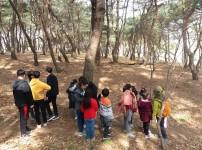 숲에서즐겁go 신나ge 자연물 체험 (무지개,순흥초)